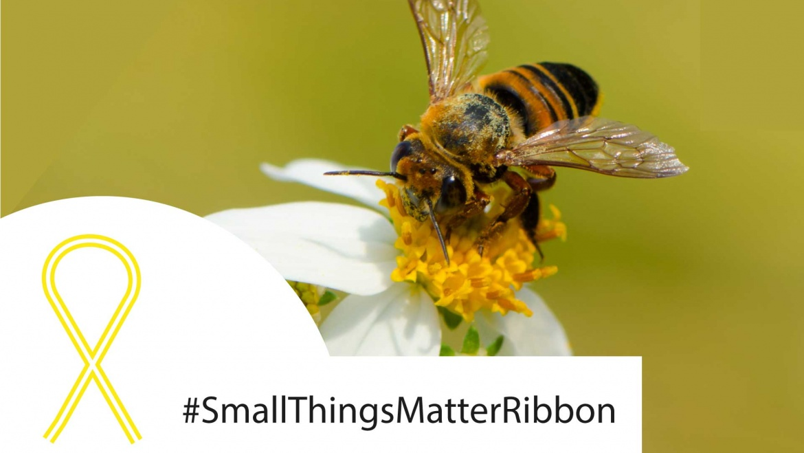 SmallThingsMatterRibbon
